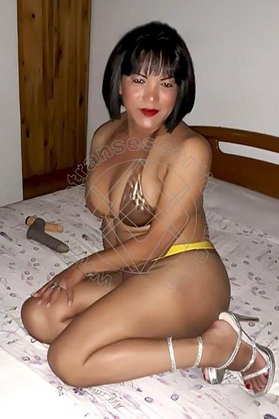 Thais NOVARA 3297897651